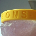 ONS/TSL Wristbands